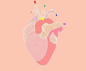 anatomy, green, and heart image