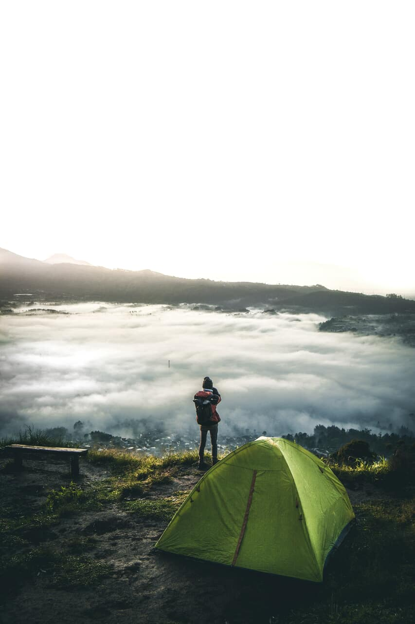 adventure, forest, and teenage image