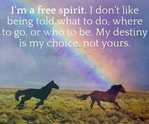 destiny, text, and free spirit image