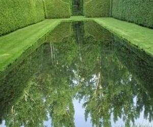 green, lake, and optical illusion image