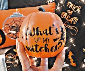 pumpkin, pumpkins, and happy halloween image