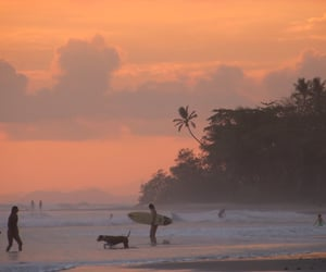 beach, surf, and sunsets image