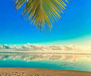 blue sky, Island, and summer image