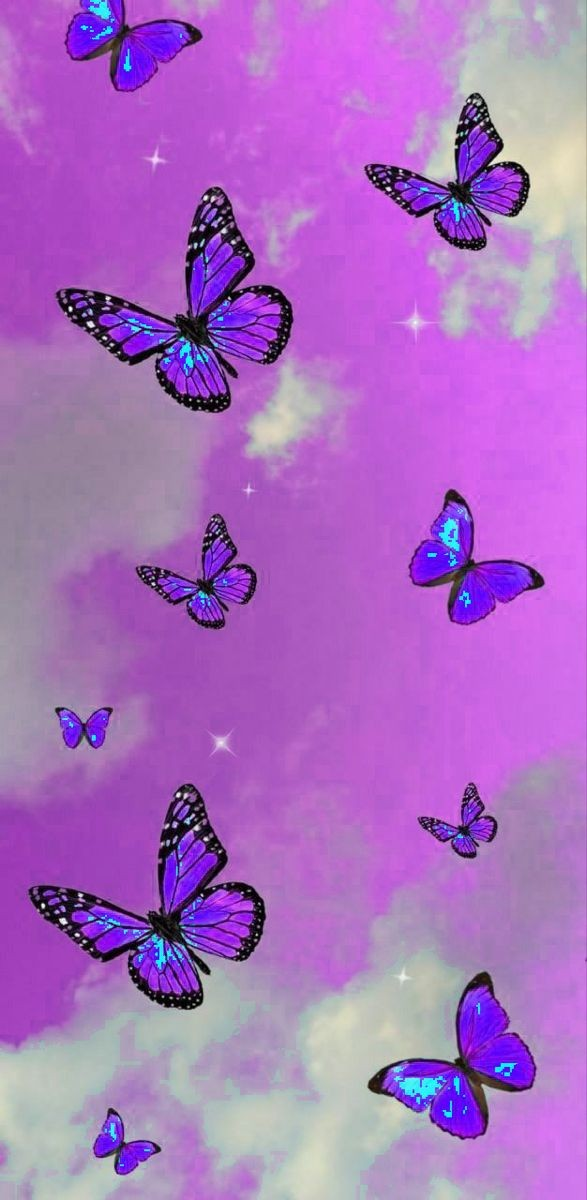 butterfly, background, and sky image