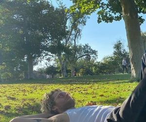 grass, park, and Sunny image