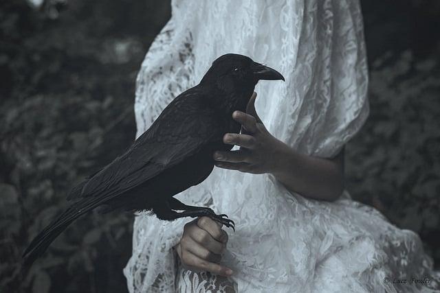 article, dark, and macabre image