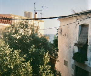 35mm, August, and summer image