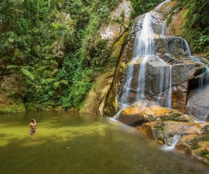 jungle, blog, and peru image