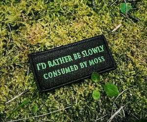 feels, swamp, and moss image