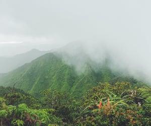 adventure, explore, and hawaii image