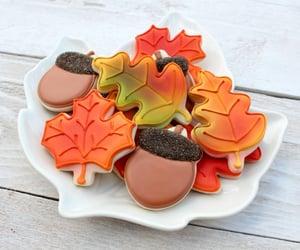 acorn, autumn, and food image