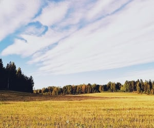 autumn, blue sky, and countryside image