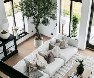 interior design, wall art, and wall decor image