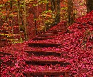 street stairs image