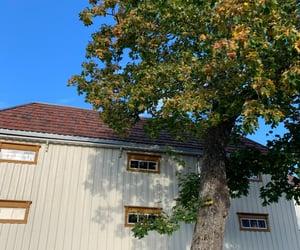 autumn, blue sky, and house image