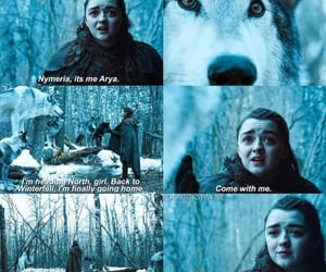 wolf, winterfell, and got image