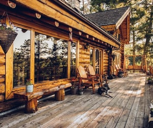autumn, cabin, and rustic image