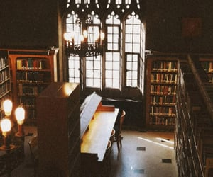 academia, library, and medieval image