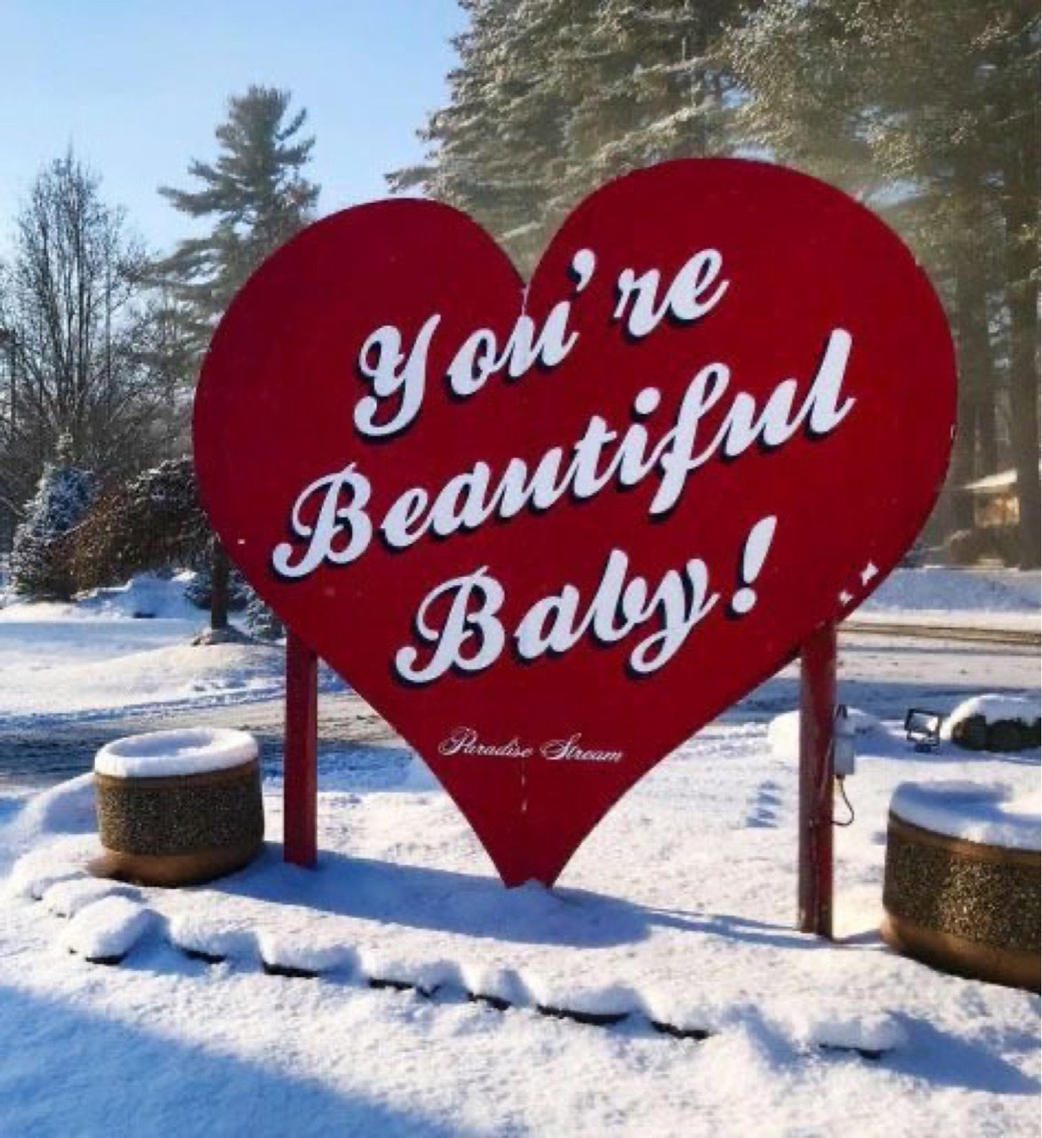 snow, love, and beautiful image