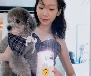 aesthetic, dog, and gg image