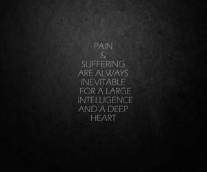 pain, suffer, and psychology image