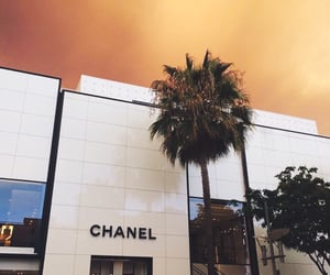 aesthetic, chanel, and shopping image