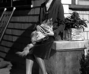 Photo by dark noir on August 05, 2021. May be a black-and-white image of 1 person, cat and outdoors.