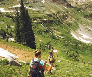 article and hiking carrier image