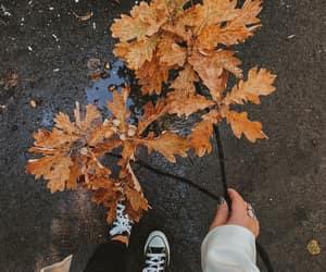 alternative, retro, and autumn image