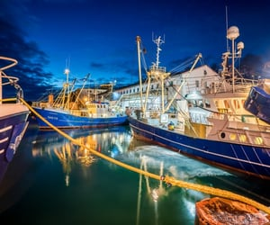 boats, dock, and night image