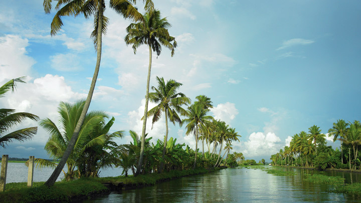 article, alappuzha, and alleppey image