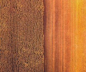 aerial photography, golden, and heartland image