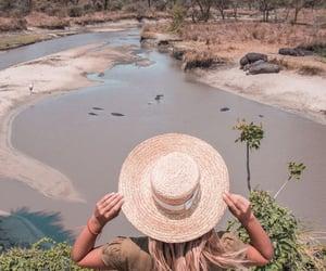 desert, safari, and vacation image