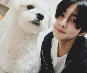 asian, JAKe, and korean boy image