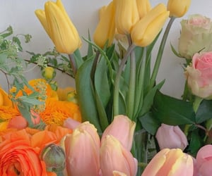 aesthetic, colorfull, and flower image