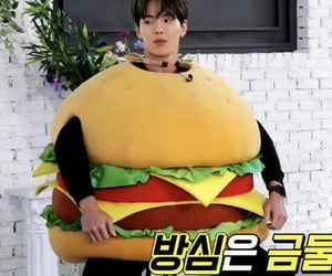 burger, lq, and funny image