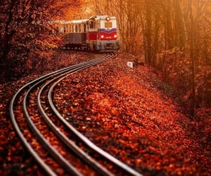 aesthetic, alt, and autumn image
