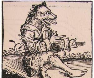 dog, meme, and werewolf image