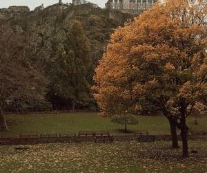 autumn, playlists, and spotify playlists image