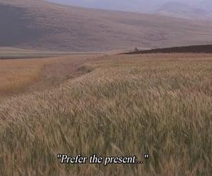 cinema, cinematography, and field image
