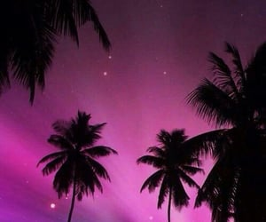 dreamer, night, and pink image