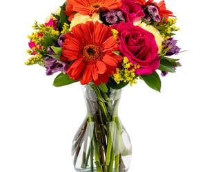 fresh flower and mixed bouquet image