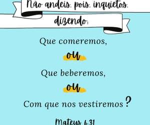 amigos, bible, and dEUS image