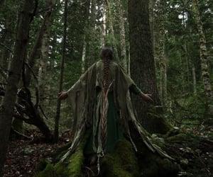 enchanted, fantasy, and magical image