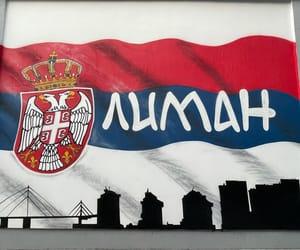 novi sad, novisad, and srbija image
