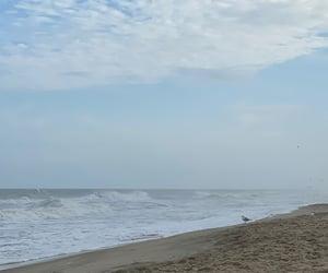 beach, beach day, and inspire image