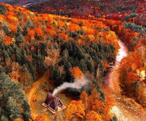 autumn, home, and coziness image