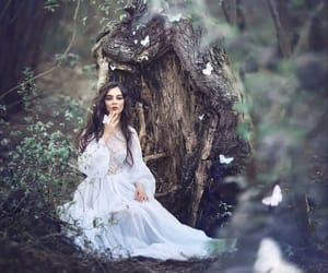 enchanted, fairytale, and fairytales image
