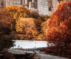 autumn, new york, and october image