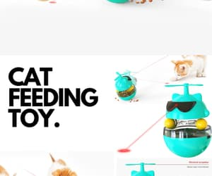 pet, toy, and pet toy image